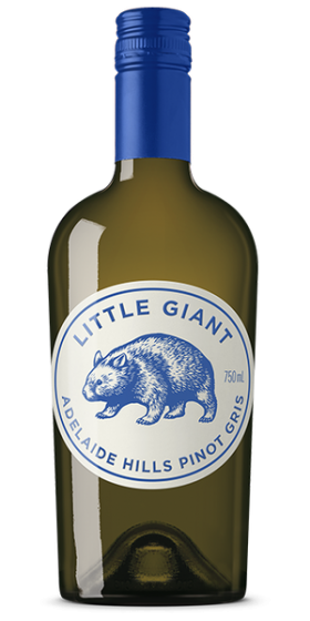 Little Giant P/gris